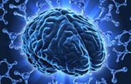 14 namirnica koje povećavaju inteligenciju