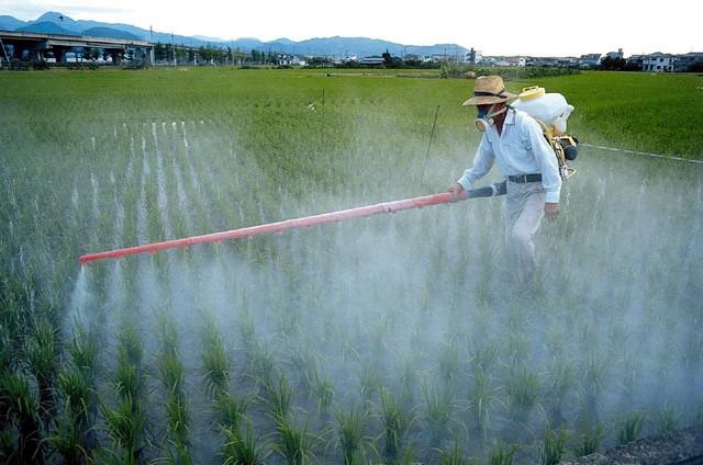 herbicidi prskanje3