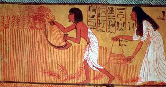 egipat test na trudnocu 500