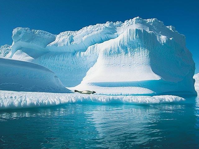 severni pol arktik