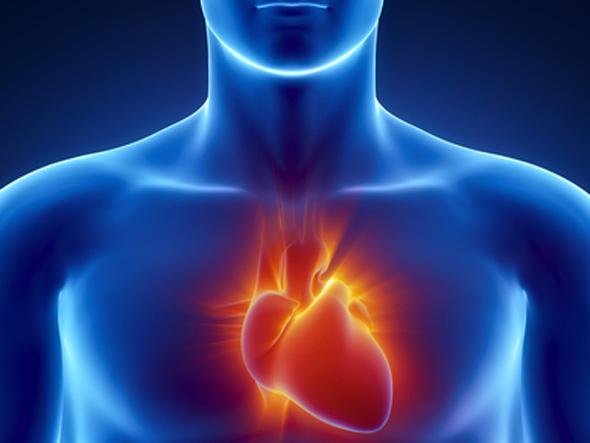 3 prirodne materije koje mogu sprečiti srčani udar – 4 prirodna jedinjenja koja mogu otčepiti arterije – Ove supstance izbegavati