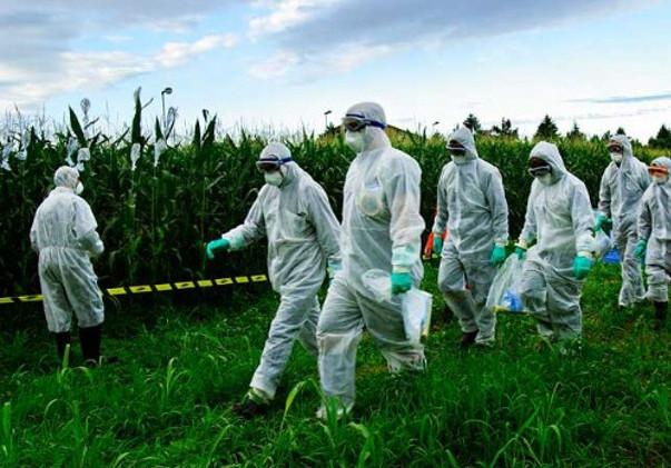 """A GDE ĆE GMO LOBISTI: U Hagu treba da počne suđenje Monsantu za """"zločine protiv čovečnosti"""""""