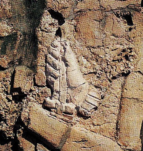 Hand of Mayan King-6 Fingers (700 AD, Palenque, Chiapas, Mexico)
