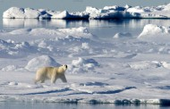 U pitanju je zavera: Arktik se ustvari namerno topi da bi se zauzeli resursi i rudna bogatstva