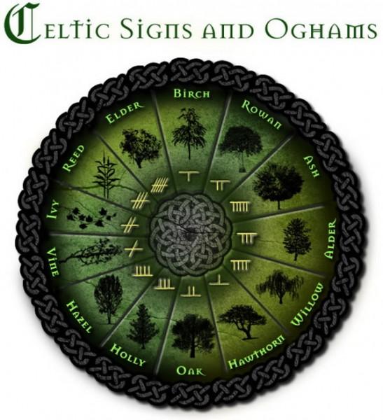 celtic-tree-zodiac67