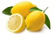 Sačuvajte svežinu limuna i do mesec dana, pomoću jednostavnog trika!