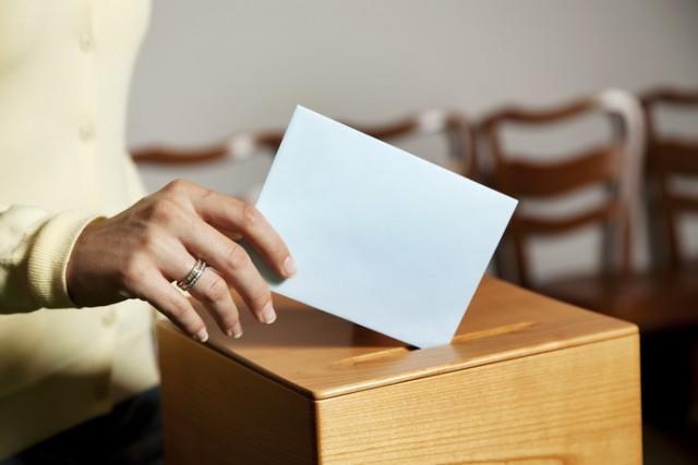 Tajni aduti vlasti: Zavetnici najavili izlazak na izbore