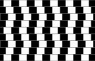 Rešite optičku iluziju: Da li su linije paralelne?