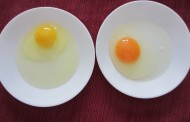 Kako da prepoznate jaje koje je bezbedno, organsko i zdravo za jelo!