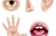 Ove delove lica ne dodirujte bez preke potrebe može biti problem