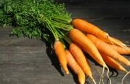 Nemojte bacati lišće od šargarepe, jer leči i najteže bolesti