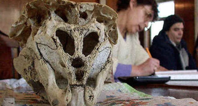 bulgarian-alien-skull