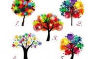 Drvo koje vam se dopada govori kakva ste osoba