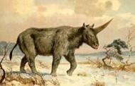 Nova studija otkrila da su jednorozi postojali pre 26.000 godina