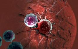 Nova studija: Jedenje mesa povezano sa nizom bolesti, ne samo sa karcinomom