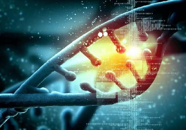 Naučnici pronašli 19 segmenata neljudske DNK u ljudskom genomu