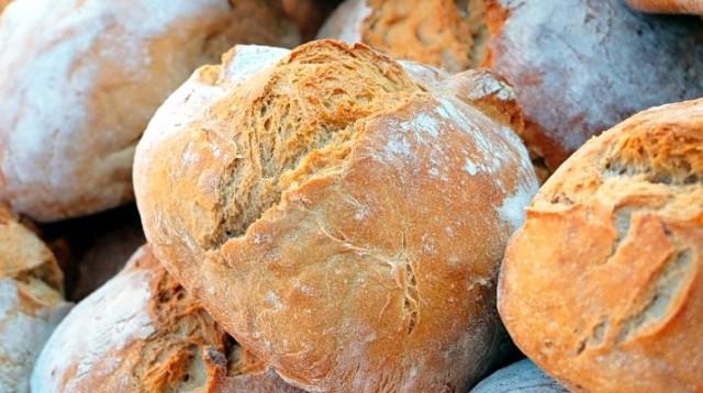 TOLIKO O VOJVODINI KAO ŽITNICI EVROPE: Srbija udvostručila uvoz hleba i pekarskih proizvoda.