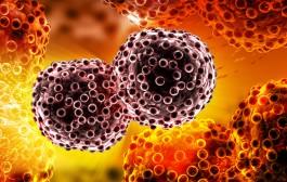 NEMAČKI NOBELOVAC ŠOKIRAO SVET: Rak se dobija od ove dve namirnice – VIDEO