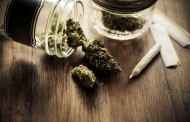 Po odluci UN i Srbija marihuanu skida sa liste narkotika
