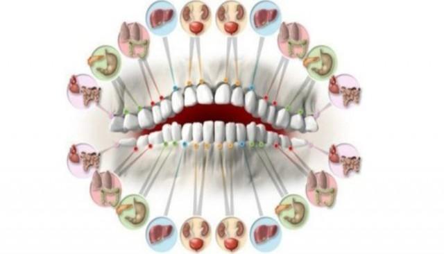 Svaki zub je povezan sa organom u vašem telu: Bol zuba predviđa problem sa organom!