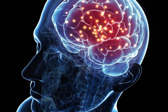 Do sada nepoznato: Mozak i živci mogu da se obnove i poprave uz pomoć ove biljke koja vam je na dohvat ruke