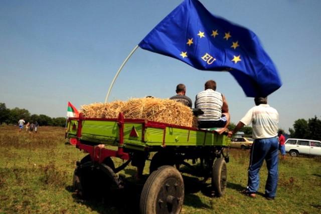 SUROVA ANALIZA: Srbija će se boriti da uđe u EU i kad nje više ne bude – EVO ZAŠTO …