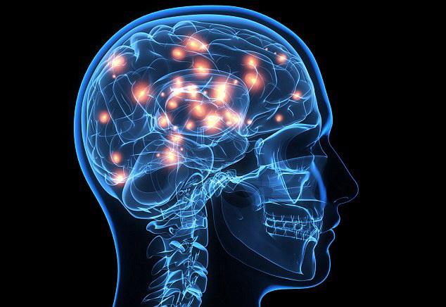 Potvrđeno: Prosečni IQ opada – Ljudi su sve gluplji – EVO ZAŠTO – ZAPANJUJUĆE ČINJENICE