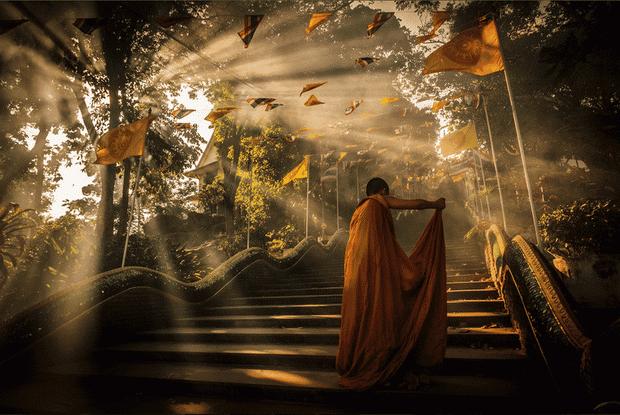 budista- budizam- svestenik