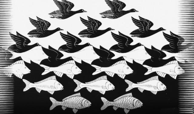 mozgalica ptice i ribe