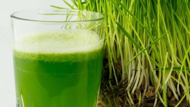 ISTINITA PRIČA: 74-godišnjak na pragu smrti pobedio rak pomoću pšenične trave – EVO KAKO … VIDEO