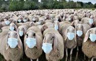 Dojče Vele: MUP Nemačke tražio od naučnika da smisle  horor o koronavirusu, kako bi se građani zastrašili i prihvatili represivne mere