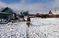 Hrabri ruski seljak savladao besnog vuka golim rukama nakon što mu je vuk ubio dva psa i napao konja – VIDEO